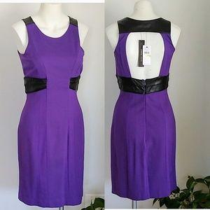 Cynthia steffe fitted purple dress NWT